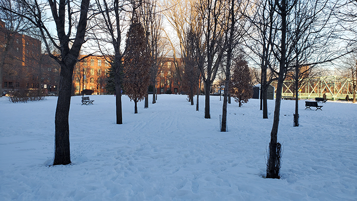 Daisy Peterson Sweeney Park 01 Montreal